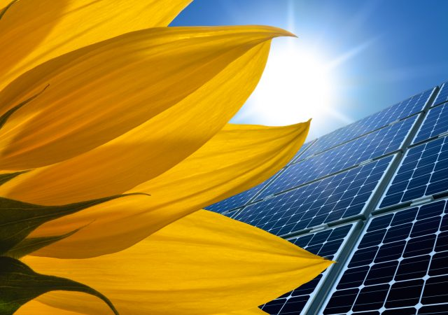 NARENCO establishing Solar Operations in Florence County, South Carolina