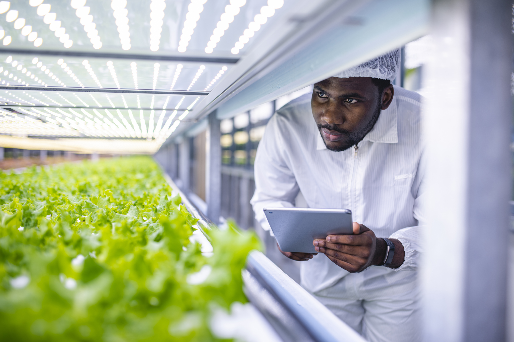 Agriculture Technology in Hampton County South Carolina