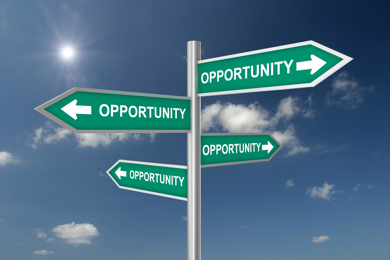 opportunity zones livingston alabama