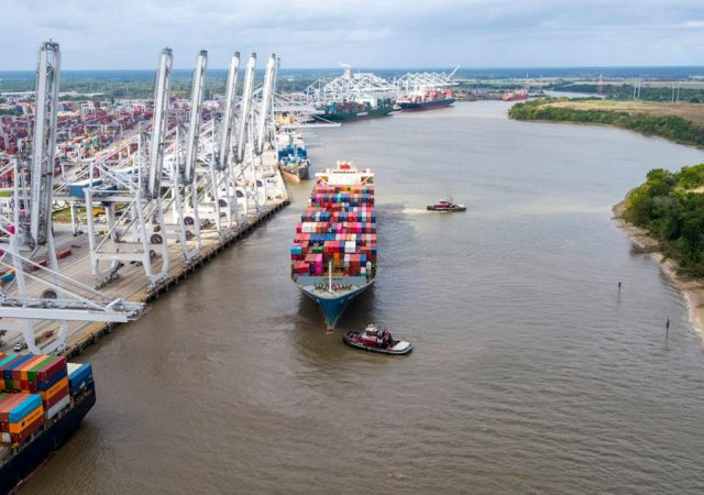 Georgia exports hold steady
